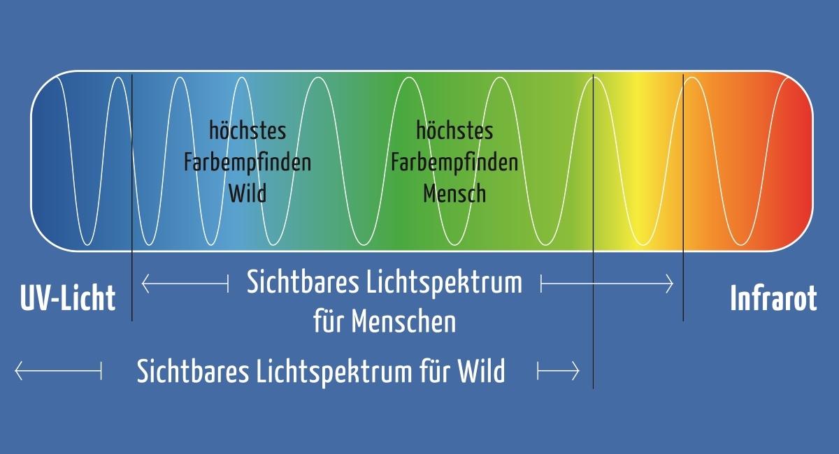 Wirkung auf Wildtiere - Farbspektrum